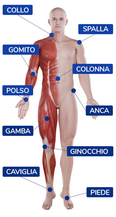 Mappa anatomica